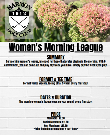 Thursday Morning Womens League